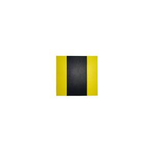 Protetor de Parachoque Parede Amarelo/Preto (eva)
